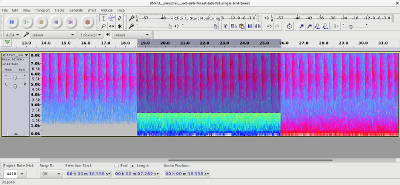 An example of using spectral editing tools in Audacity to highlight unwanted audio.